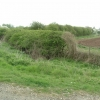 Hedgerows near Thame
