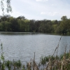 The Lake, Acton Park, Wrecsam