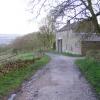 Beet Farm