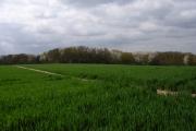 Farmland above Wooburn Green
