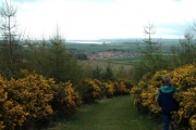 Balmullo from Lucklaw