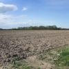 Agricultural land.