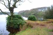 Drumlochart Loch
