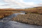 River Haultin