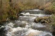 Natural cascades