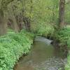 Windle Brook