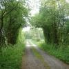 The lane to Odd House