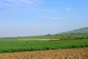 Farmland near Berwick