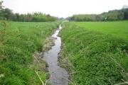 River Ver near Flamstead