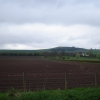 Farmland by East Memus