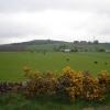 Fields near Derachie