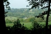 Willingford from Blackbrooks Wood