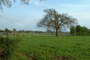 Farmland near Marbury