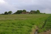 Popley Fields