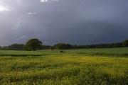 Storm-clouds near Sherborne St John