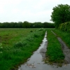 Bridleway to Gilberdyke