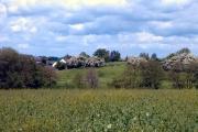 Hunsterson farmland