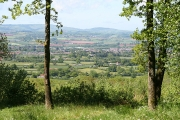 Wellington: view from Quarts Moor