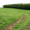 Parracombe: below Rowley Down