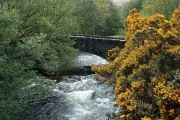 Scalastle river