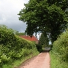 Lane to the Woodland, Dorstone