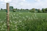 Farmland near Lampardbrook