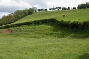 Farmland at Nant-y-bar
