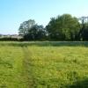 Meadow beside River Tale