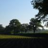 View near Iron Gate Lodge