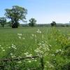 Path - Barton-le-Willows