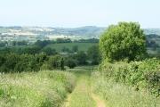 Tiverton: track near Lower Warnicombe