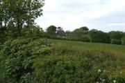 Farmland near Cutthorpe