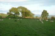 Farmland at Pen-yr-allt