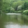River Avon above St Anne's Park