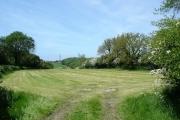 Caerwys fields