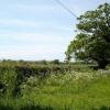 Mynydd llan fields and trees