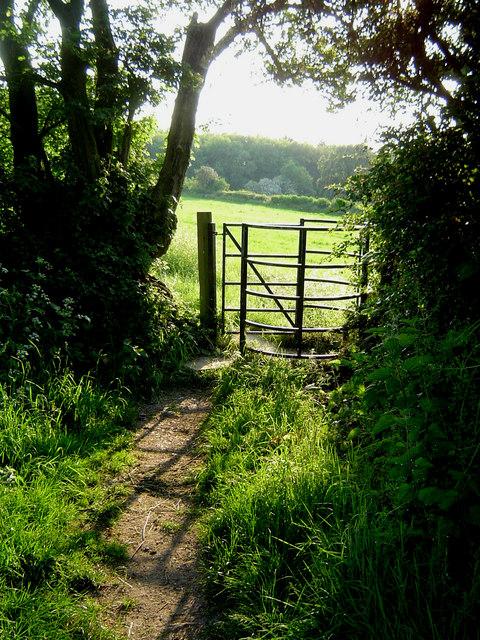 The Ridgeway near Wigginton