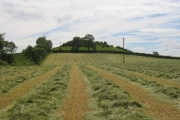Haymaking at Yarn Hill