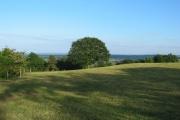 Pasture on Bickerton Hill