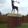 The Brockhall Stag