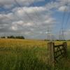 Fields at Akenham