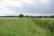 Farmland at Holtridge