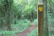 Footpath through woodland near Shortwood Lodge