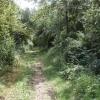 Bridleway, course of Roman Road, Sandford Brake