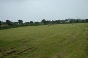 Farmland near Cim Farm