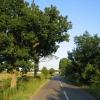 Country road, Lower Gravenhurst, Beds