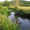 River Amber - Sawmills