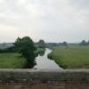 River Otter, Gosford
