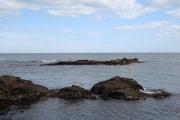 Rocks South of Greg Ness