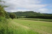 Farmland, Leinthall Earls